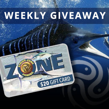 SPACEFISH Weekly Giveaway Contest