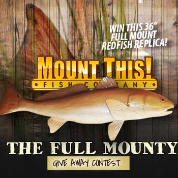 Full Mounty Redfish Giveaway Contest