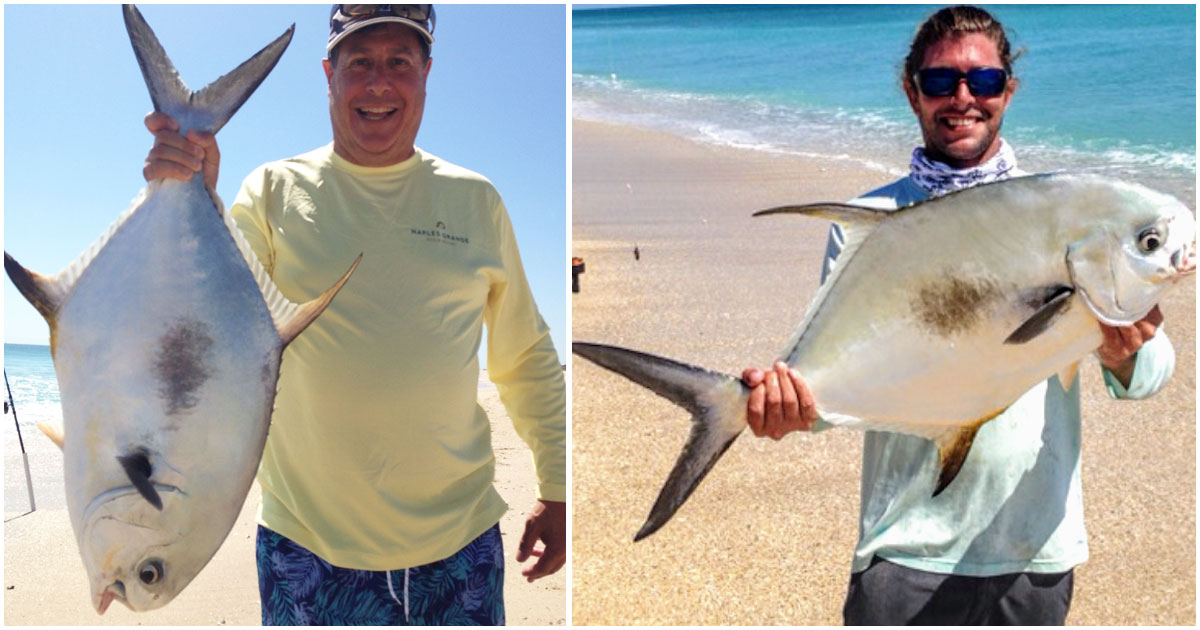 Two enormous permit doubled-up while surf fishing at Sebastian Inlet