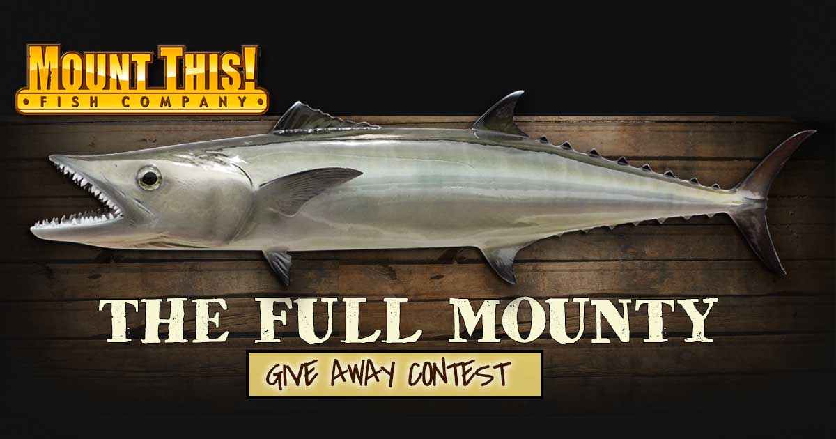 Mount This Fish Kingfish Giveaway Contest