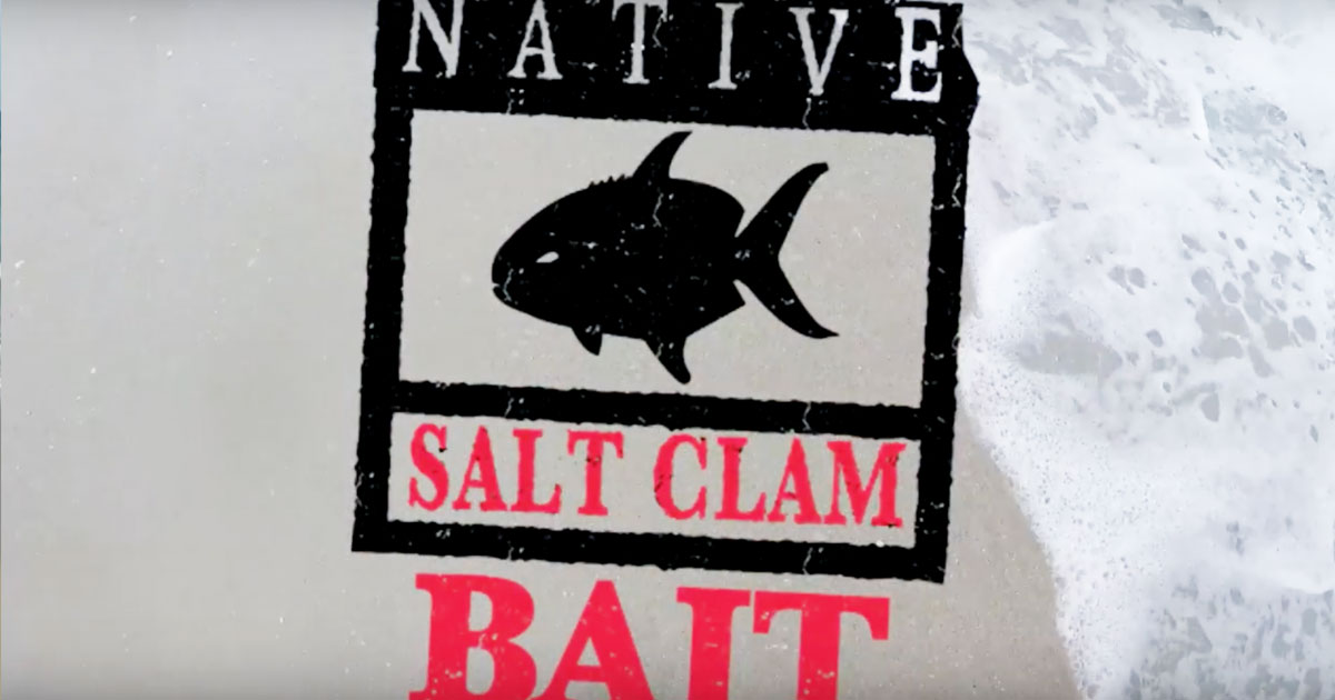 NATIVE SALT CLAM BAIT