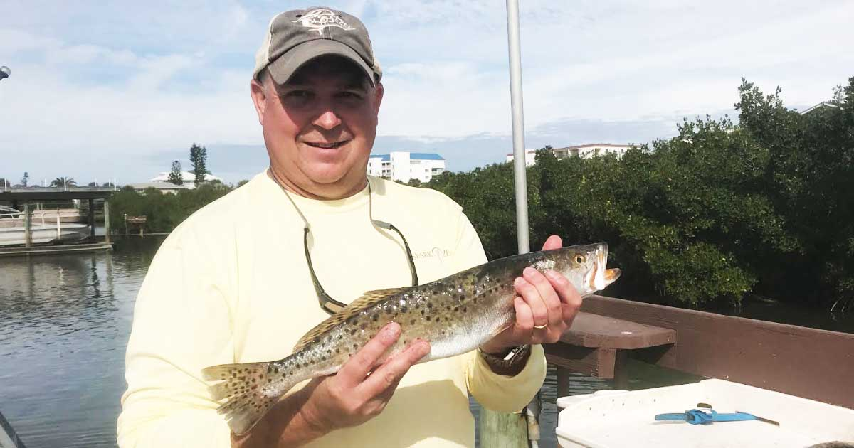 Mosquito Lagoon spotted seatrout