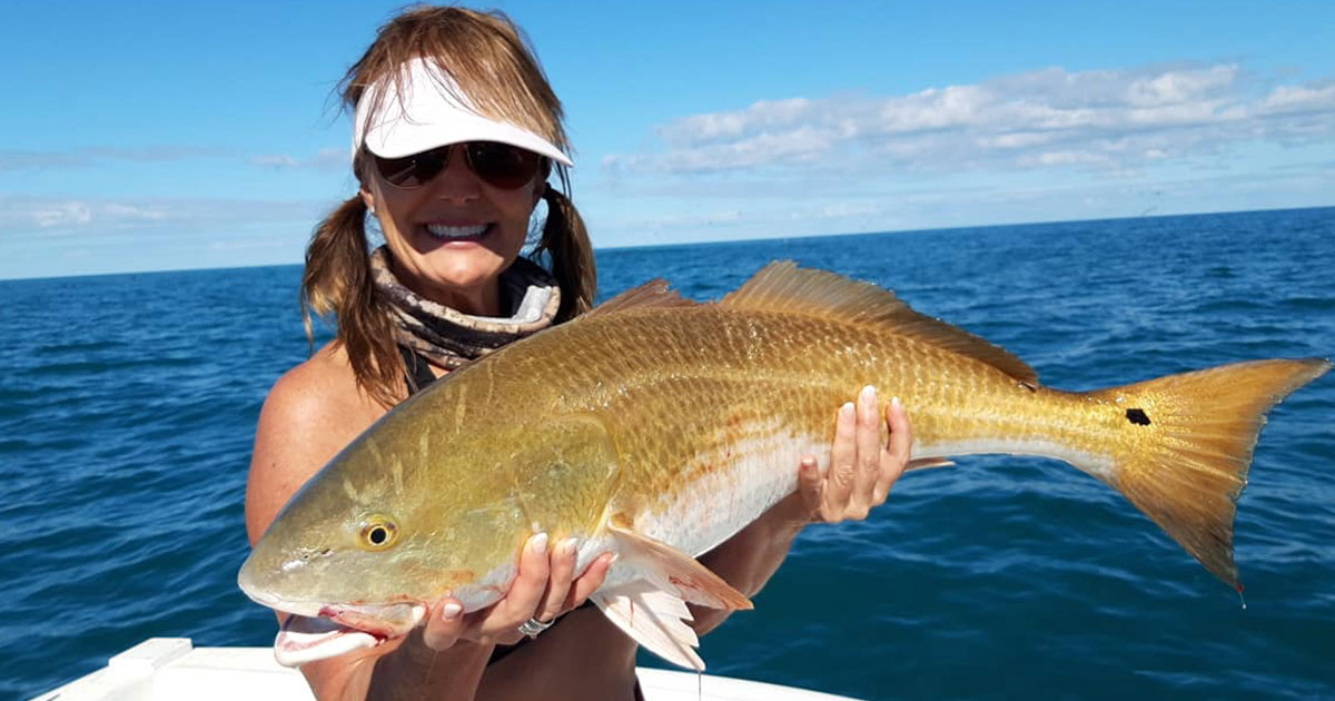 redfish frenzy