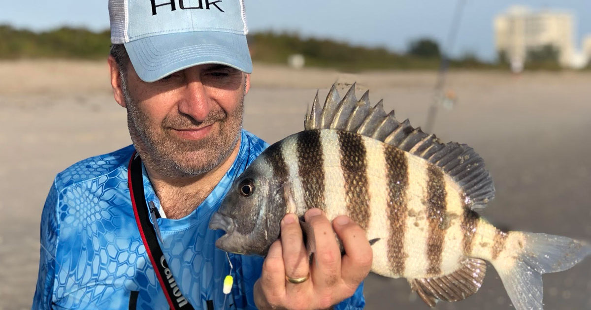 surf fishing sheepshead