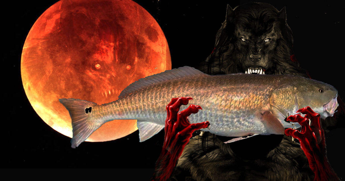 fishing on the super blood wolf moon