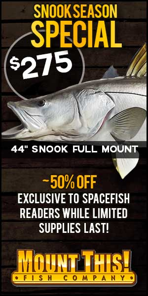 Snook season replica special!