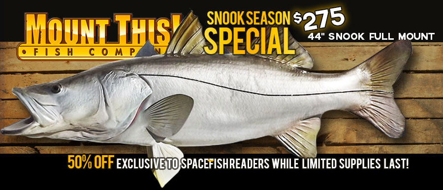 snook replica special - mount this