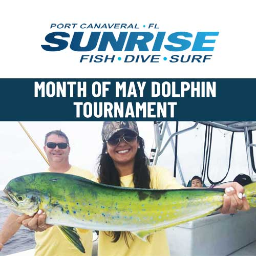 Dolphin Tournament