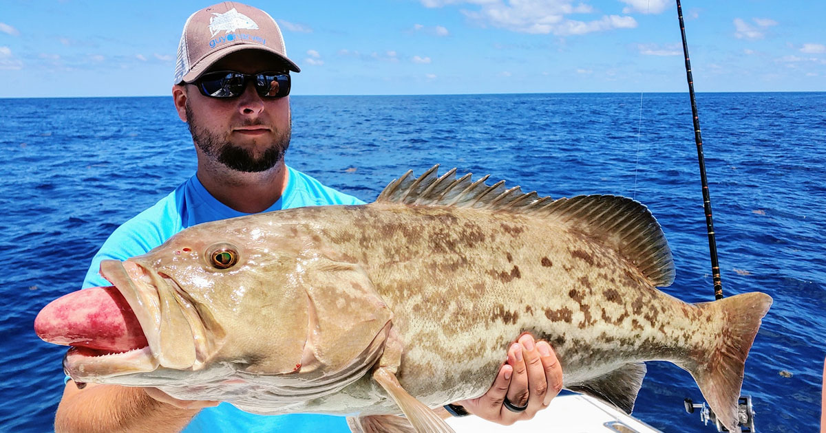 port canaveral grouper