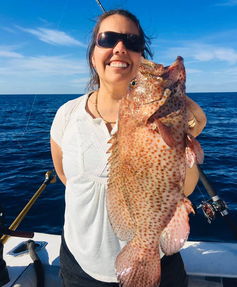 Graysby Grouper
