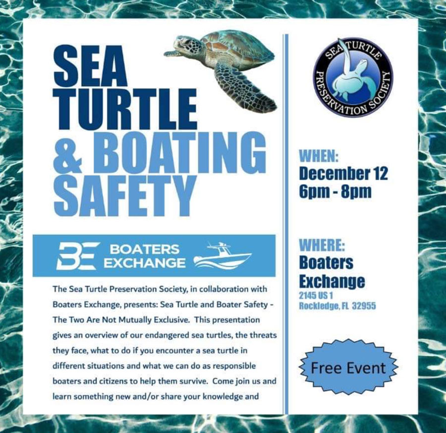 sea turtle and boating safety