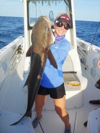 monster cobia