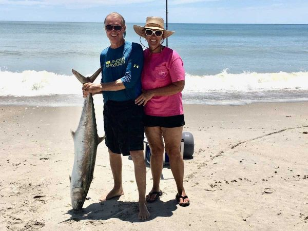 kingfish in the surf