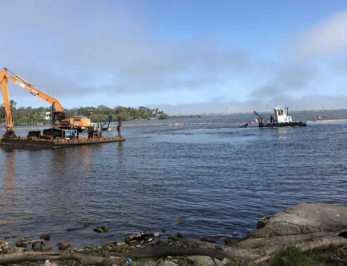 Indian River Lagoon Muck Removal