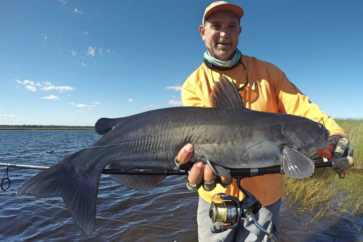 St Johns River Channel Cat Fishing
