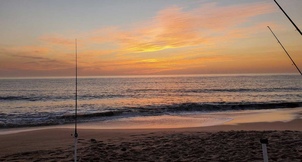 surf fishing report